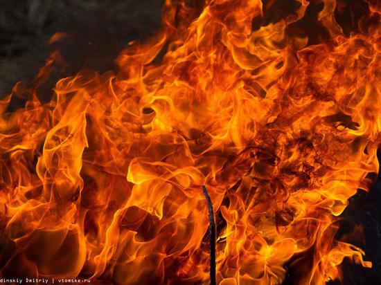 В Удомле Тверской области сожгли чужой дом