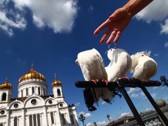 Перед ЧМ образовалась мафия: новые виды «разводок» в Москве