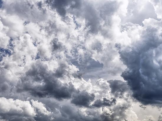 До +30°C и грозы: прогноз погоды в Алтайском крае на праздники