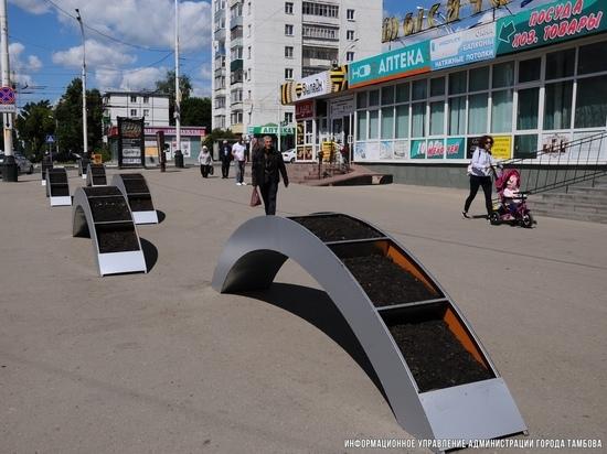 Вместо незаконных тонаров в Тамбове устанавливают необычные клумбы