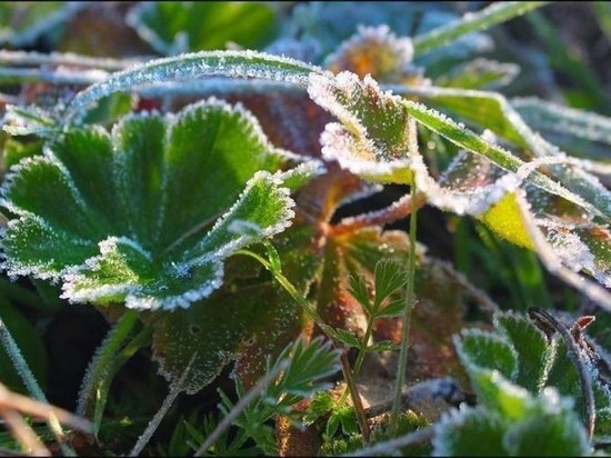 В Самарской области побит очередной температурный рекорд