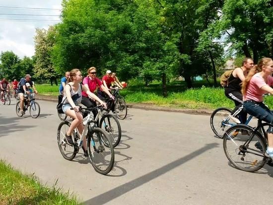 В Ульяновске на бульваре Новый Венец прошел праздник «Энергия спорта»