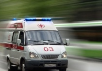 Глава Серпуховского района Александр Шестун резко заболел