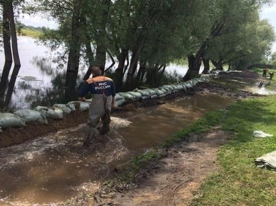 В барнульском Затоне ввели режим повышенной готовности к паводку