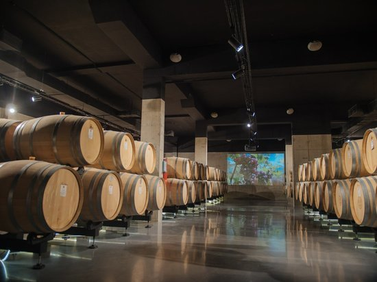 Севастопольские виноградари и виноделы поддержали проект