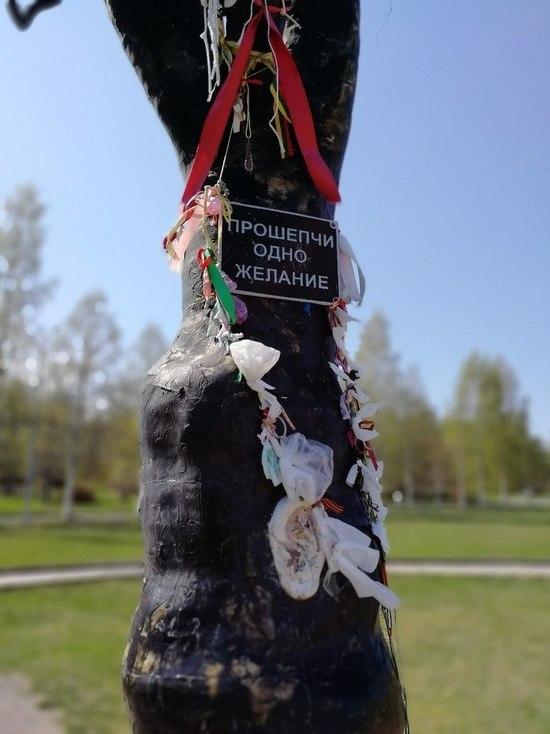 Турист так отпраздновал торжество в Карелии, что выдворили из страны