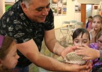 Лола родила Лулу: Даллакян рассказал челябинским школьникам о своих питомцах