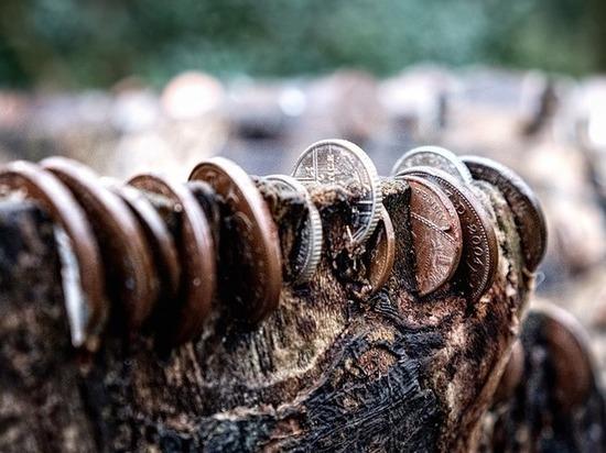 10 миллионов для микропредприятия: последствия лесной взятки