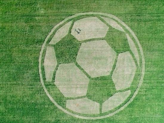 В Татарстане к ЧМ-2018 на поле выкосили гигантский футбольный мяч