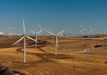 Всемирный день ветра: как отметить необычный праздник