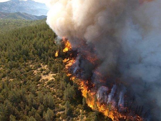 В Якутии горит почти шесть тысяч гектаров леса