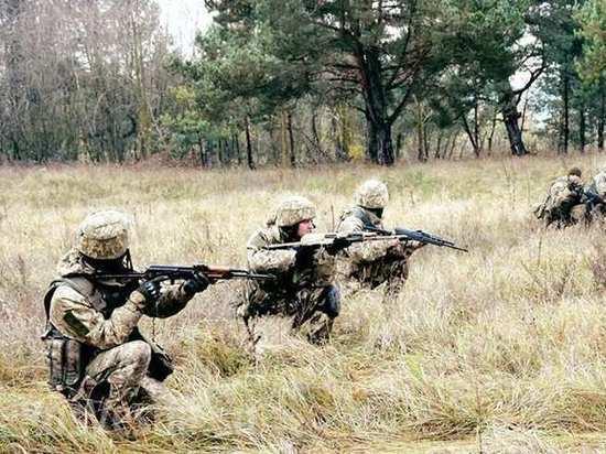 ДНР: украинские силовики организовали иностранцам