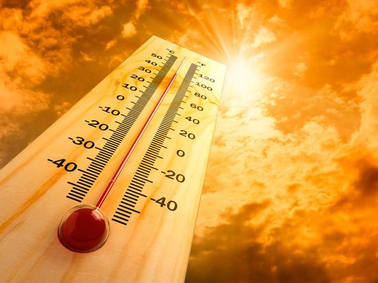 В Ульяновске до конца недели установится жара до +30 градусов