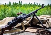 Киев намерен реинтигрировать ДНРиЛНР спомощью Крыма
