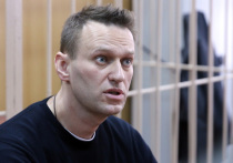 Навальный объявил протестные акции против пенсионной реформы в 20 городах
