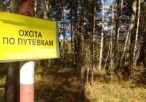 «Царь зверей»  в Первоуральске: председатель районного общества охотников  и рыболовов зарабатывает на чужом хобби