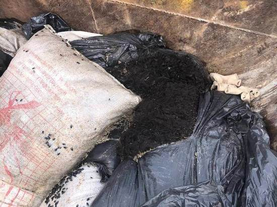 Жители Мытищ пожаловались на кладбище баранов под окнами дома