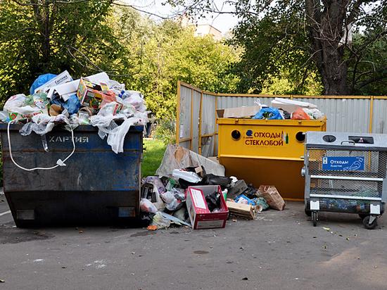 Эксперты назвали четыре причины мусорного коллапса в Москве