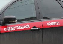 Экс-соратника Чубайса в