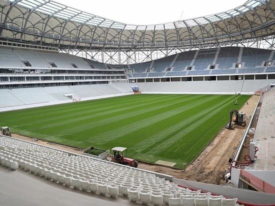В Волгограде разгорелся недетский скандал на фоне чемпионата мира