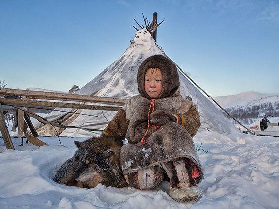 Пришла ПОРА экологического образования в Арктике