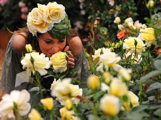 На Фестиваль цветов в Следово приедут сотни гостей