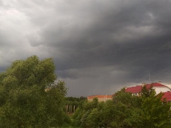 Ветер до 30 метров в секунду, гроза и град: Костромская область объявила штормовое  предупреждение