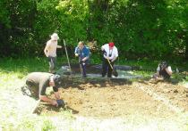 В Перми завершила сезон раскопок международная экспедиция по поиску останков Михаила Романова