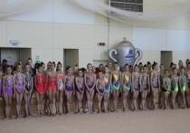 Гимнастки из Элисты вошли в тройку лучших на соревнованиях в Кисловодске