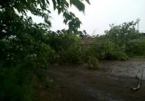 Электроснабжение после грозы в районах Костромской области восстановили глубокой ночью