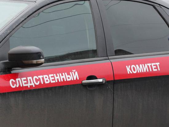 Следователи раскрыли подробности загадочной гибели супружеской пары в Подмосковье