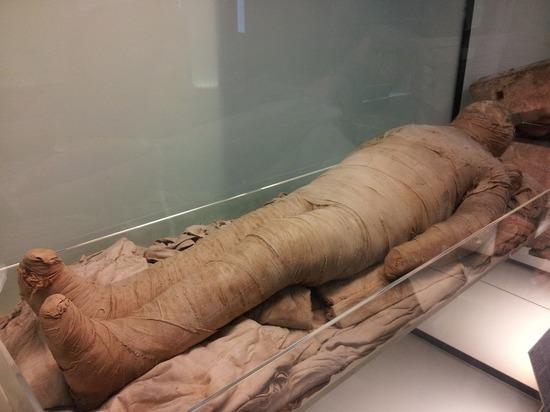 В Красноярском крае нашли двухтысячелетнюю мумию, которая отлично сохранилась