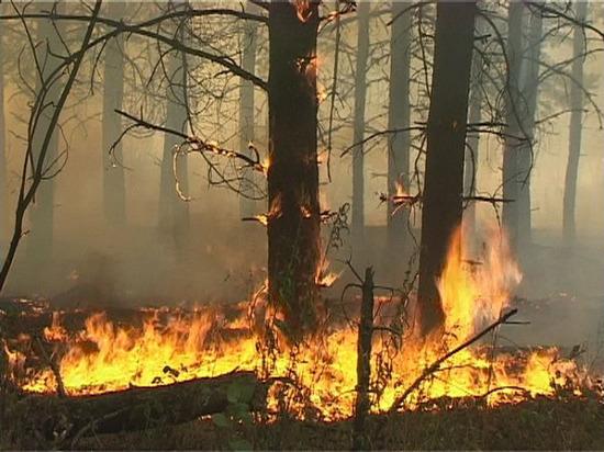 В Тольятти обнаружен обгоревший труп мужчины