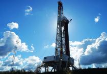 Развал ОПЕК грозит нефтяным ценам скорым крахом