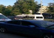 На поводу у коммерсантов: власти озвучили причину резкого роста наездов на пешеходов в Обнинске