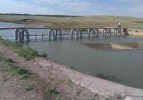 В Переволоцком районе возбудили уголовное дело после гибели детей на водоеме