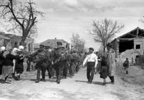 Как  на Кубани воевали после взятия станицы Крымской в 1943-м