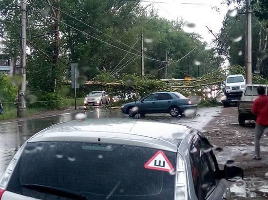 В Омске шторм повалил деревья и парализовал город