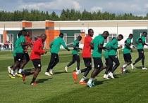 Второй матч сборной Сенегала на ЧМ покажут в Калуге на большом экране