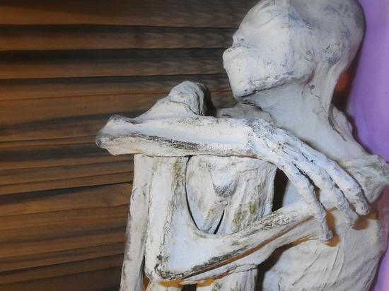 СМИ: трехпалая перуанская мумия оказалась неизвестным науке гуманоидом