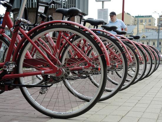Специалисты рассказали, зачем в Москве нужен велопатруль