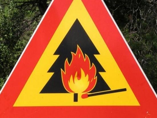 В Мордовии в девяти районах ввели 5-й класс пожарной опасности