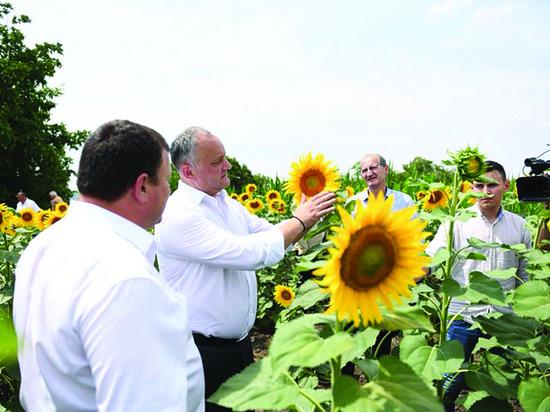 Игорь Додон: «Земля и люди – самое большое богатство Молдовы»