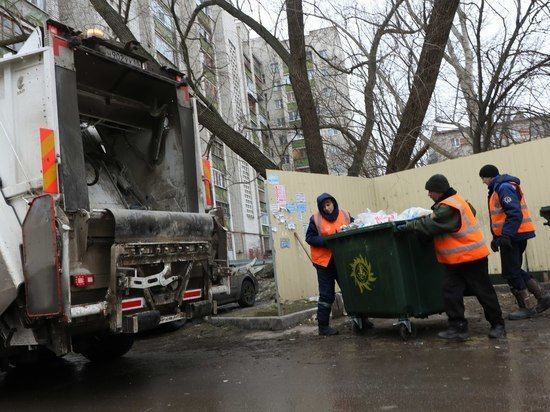 Тамбовские депутаты наделили муниципалитет полномочиями по сбору и вывозу мусора