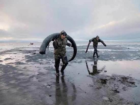 Инициатива якутских законодателей о добыче бивней мамонта нашла поддержку Госдумы?