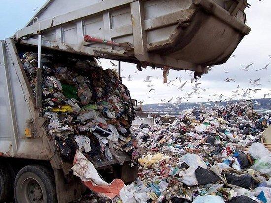 Вывозом мусора в Костромской области займутся три региональных оператора