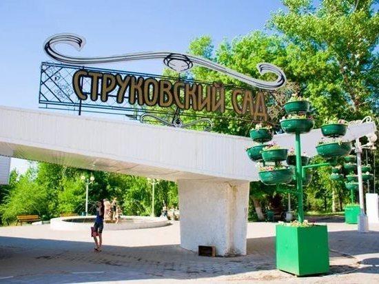 В Струковском саду устроят серию джазовых концертов