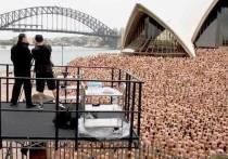 Известный фотографиями обнаженных толп американцев Спенсер Туник заявил, что намечает на июль новую массовую съемку - на одной из главных улиц Мельбурна