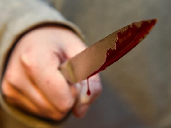 В Ульяновской области будут судить мужчину, подозреваемого в убийстве сожительницы