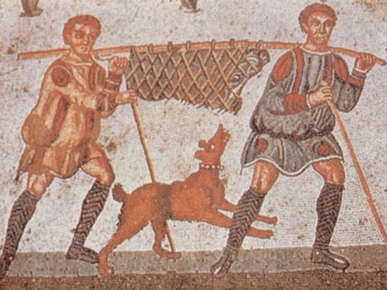 Археологи Крыма обнаружили, что древние греки ели собак